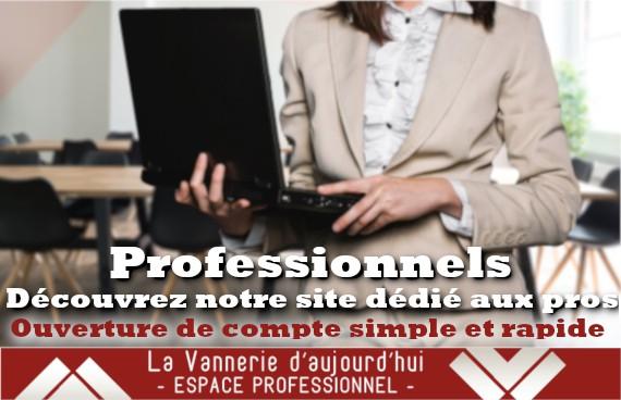Accès réservé aux professionnels